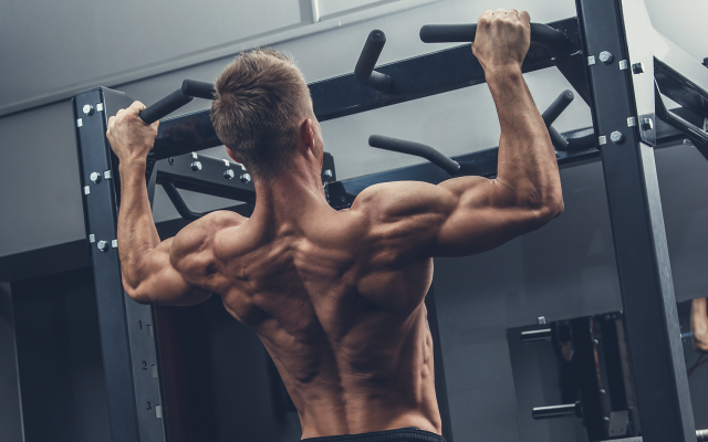11 Efficient Arm Workouts To Build Might & Muscle