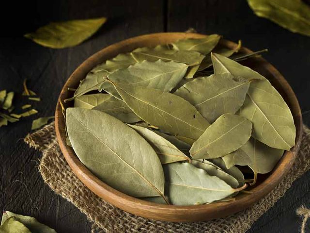 10 Health Benefits Of Bay Leaves That Keep Diseases At Bay